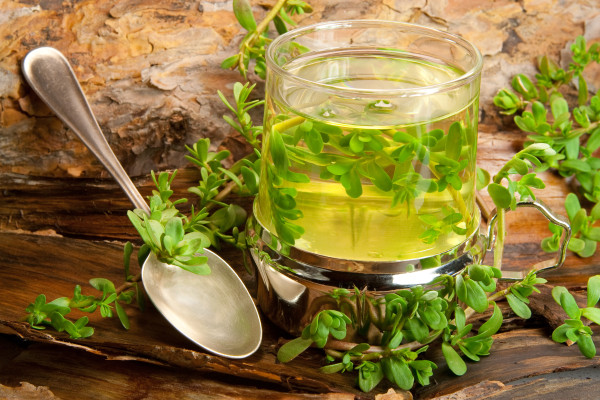 ancient herbs