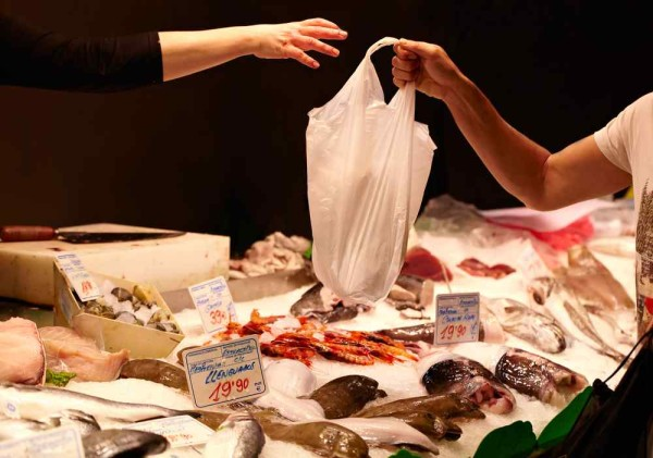 fish purchase lr