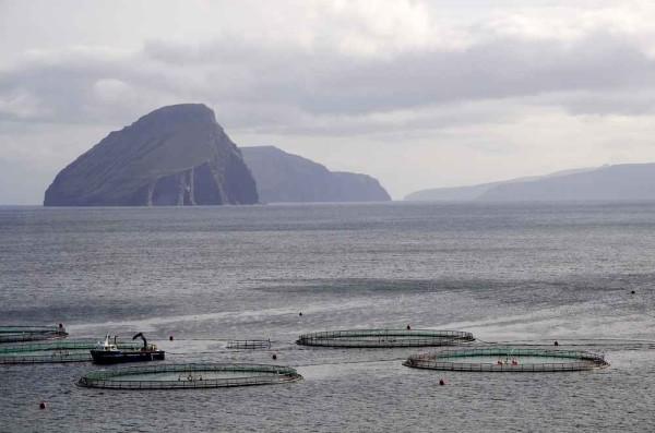 Ферма по выращиванию лосося, Норвегия
