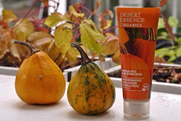 desert essence pumpkin hand cream