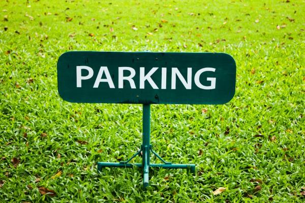 parking-grass