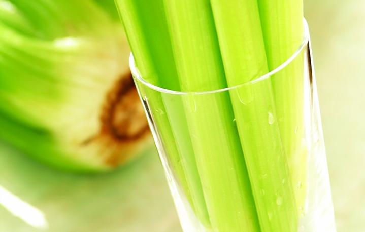 celery selderey