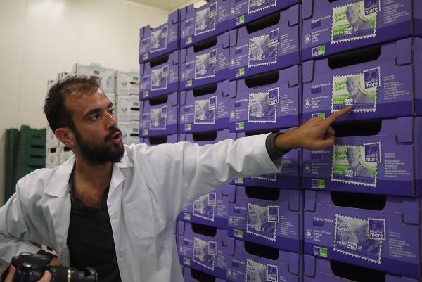 На заводе по упаковке цитрусовых био, Западная Греция