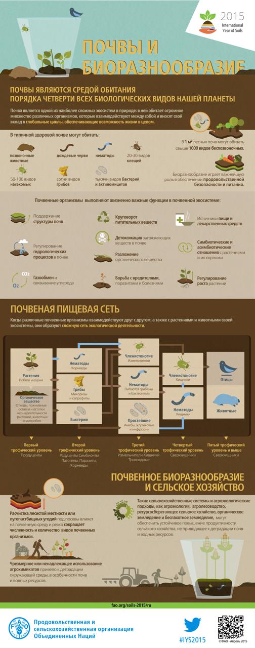 Soil infografika pochva 1
