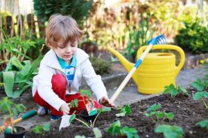 small gardener