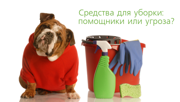 eco cleaning