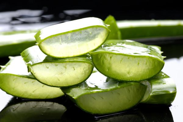 Aloe-Vera-Gel-Benefits