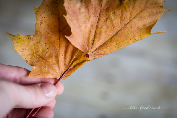 how-to-make-a-crown-of-leaves-by-Lori-Frederick-7