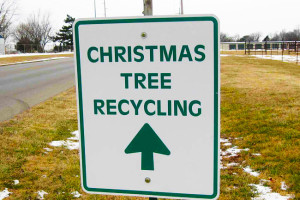 christmas-tree-recycling-sign