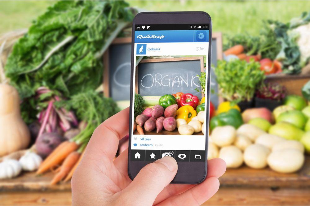 Female hand holding a smartphone bio veggie