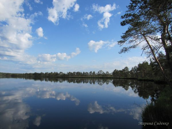 Фото: озеро Вервижское, Смоленское поозерье