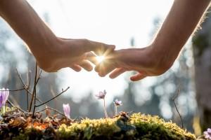 environment flower hands