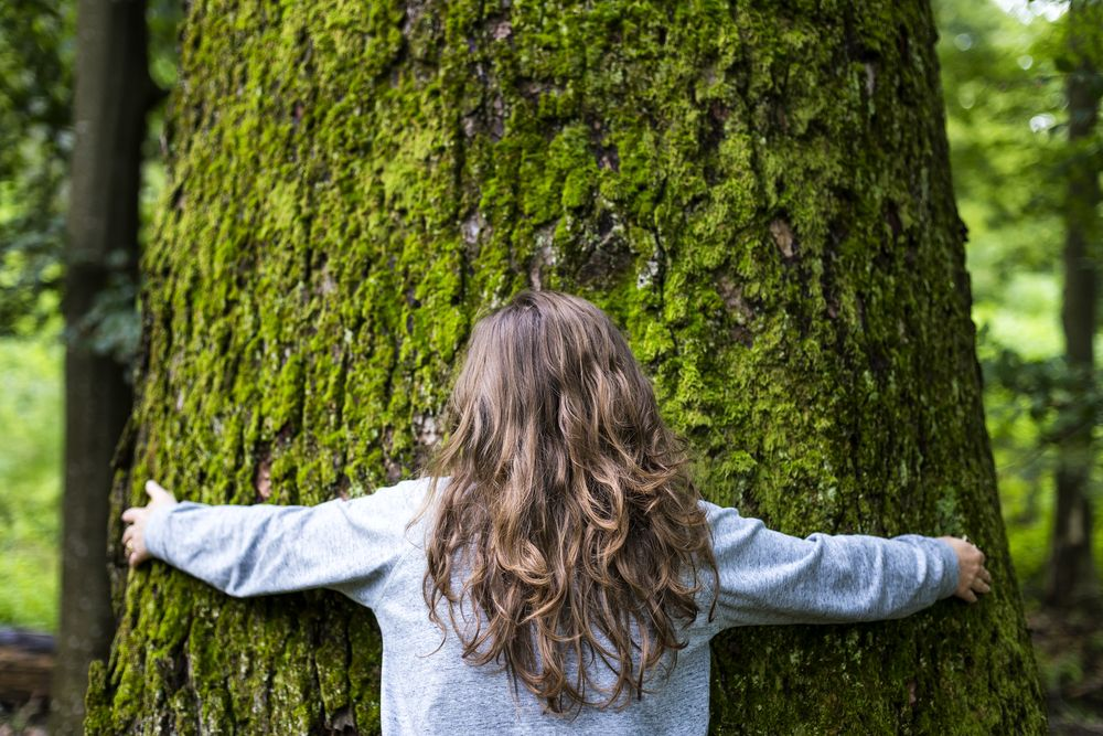 young girl hugging a big tree in the forest