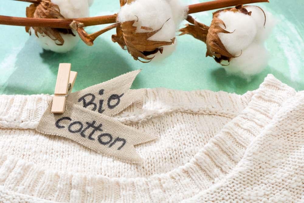 Sweater bio cotton natural fabrics