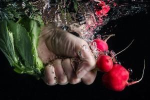 radish under water veggies