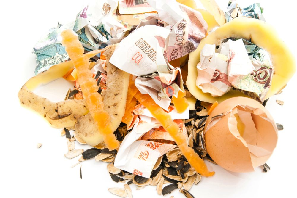 russian banknotes and garbage