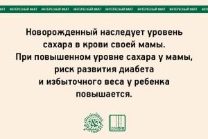 julia bogdanova_05