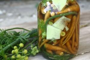 Рецепт ферментированной моркови: https://lookbio.ru/eda/recepty/kvashenaya-ostraya-morkov-s-imbirem/