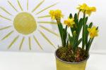 Для встречи весны