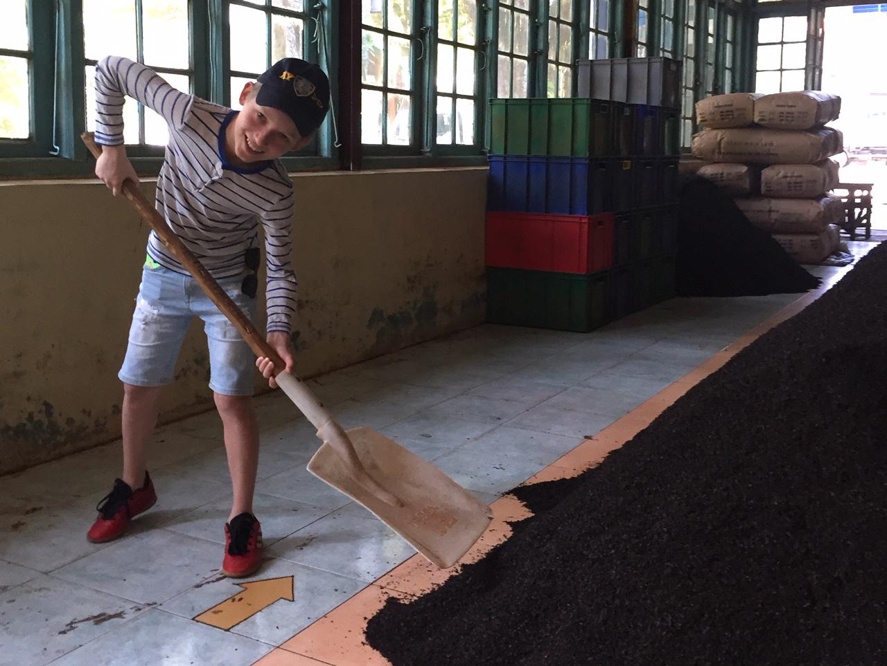 Гора чая и лопата - это основное впечатление от фабрики