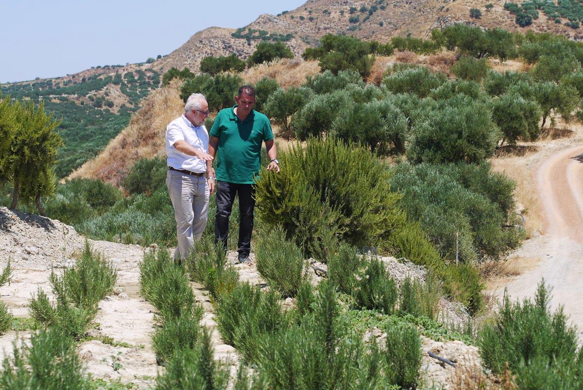 bioselect kosemtika plant