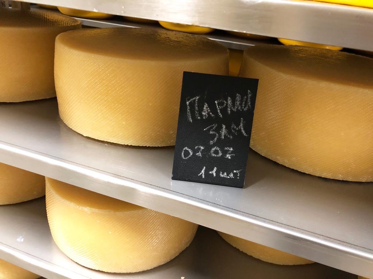 ferma m2 syr