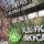 """Green is the new black! """"Азбука Вкуса"""" начинает десятилетие осознанности"""