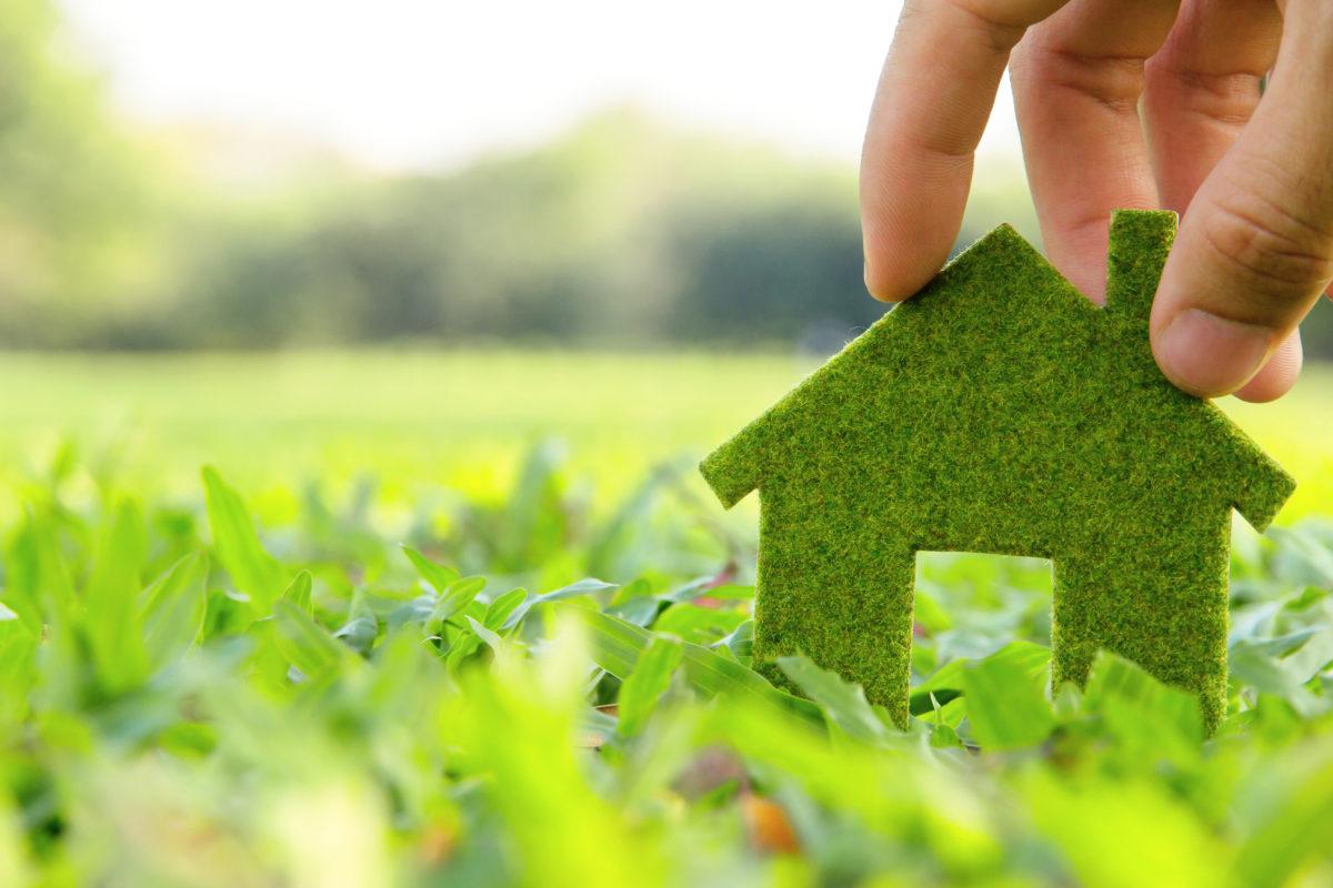 zelenoe stroitelstvo