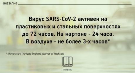 koronavirus ostaetsya na poverkhnosti