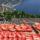 Мы по самые забрались помидоры: 7 фактов о ликопине