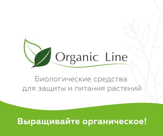 Organik Line