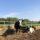 Эко-ферма Рябинки: семь лет отмерили