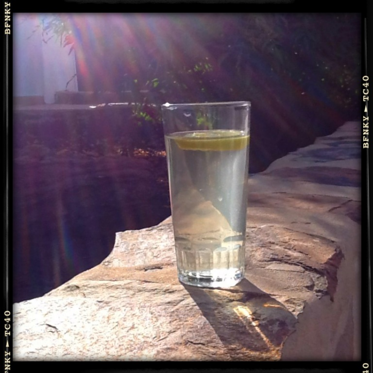 water and lemon pic 2