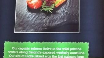 Исландия: био-лосось
