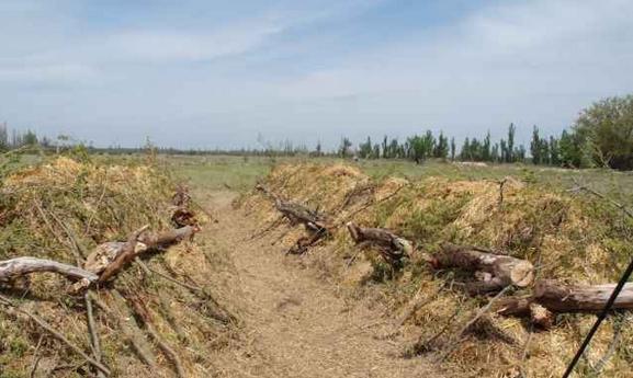 Работы Зеппа Хольцера по улучшению почвы. Фото с сайта rodonews