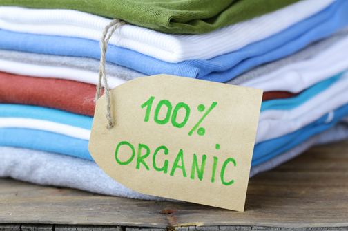 esphoto_organic_cotton_clothing-504x334