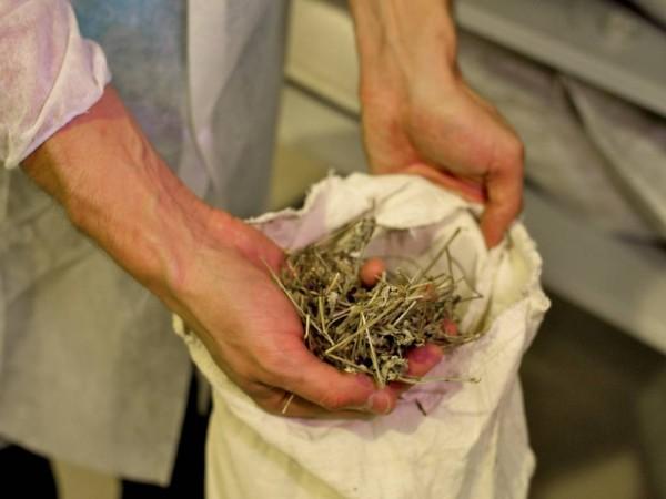 НатураСиберика завод травы