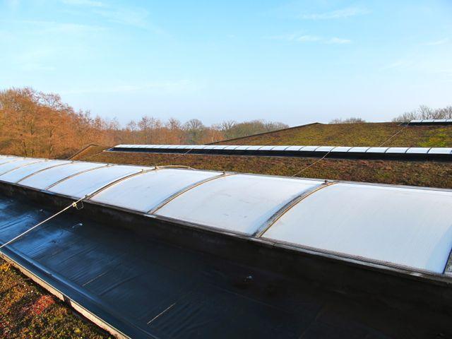 Зеленая в буквальном смысле крыша завода Ecover. Иногда работники завода устраивают на ней барбекю.