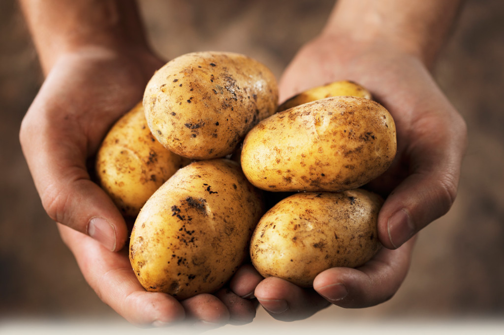 Фотография: www.potatoes.com