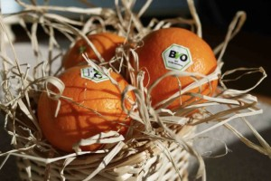 apelsin bio lr