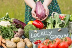 Locally grown vegetables hands shopping news