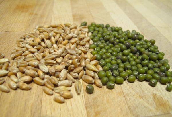Сухие семена