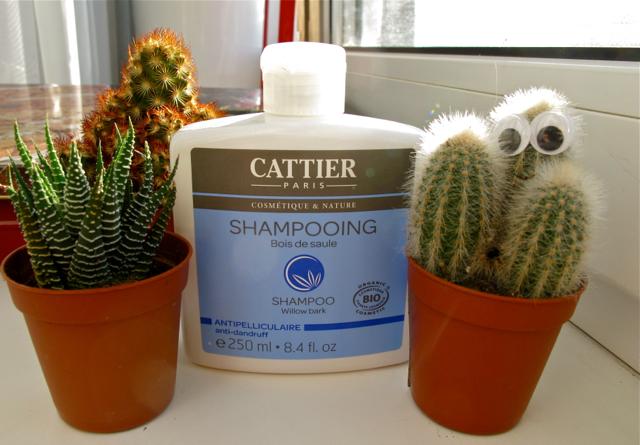 Protiv perhoti shampoos 1