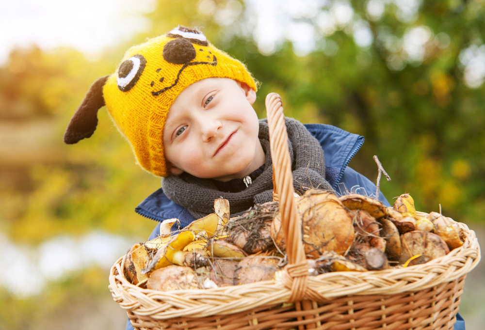 Boy in a funny hat with basket full of mushrooms