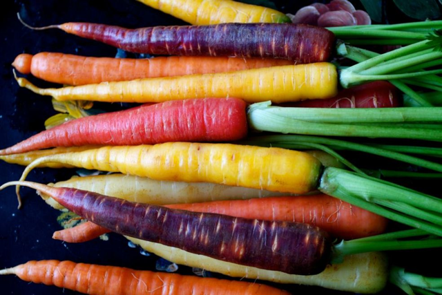 carrots purple yellow orange morkov