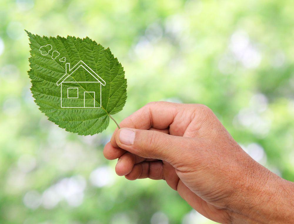 eco_living