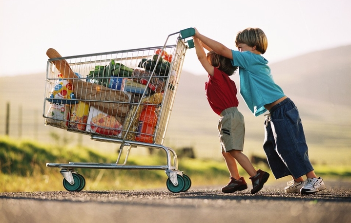 shopping trolley boys kids food
