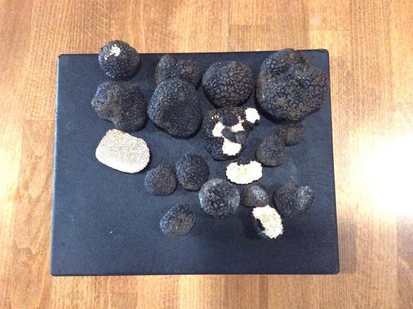 ostrov truffel