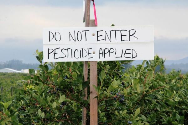 pestiside_2