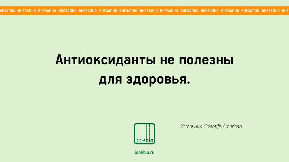Vnezapno_04